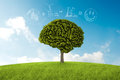 Natural consideration tree in the shape of brain thinks to environmental solution Royalty Free Stock Image
