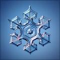 Natural Crystal Snowflake Macro Blue