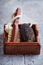Natural dark Pumice and Bath Brush Royalty Free Stock Photo