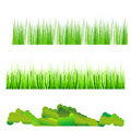 Natural grass Royalty Free Stock Photography