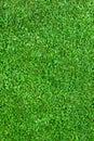 Prírodné tráva