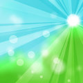 Natural green abstract background with the rays of sun Royalty Free Stock Photo