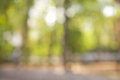 Natural green blurred background with beautifull bokeh Royalty Free Stock Photo