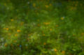 Natural green defocused bokeh background Royalty Free Stock Photo