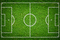 Natural green grass soccer field closeup image of Royalty Free Stock Photos