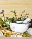 Natural herbal remedies and supplements still life conceptual of with a variety of fresh herbs in a pestle mortar roots Royalty Free Stock Images