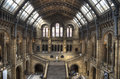 The natural history museum of london april great central hall decorated with paintings and fretwork plants and animals Royalty Free Stock Photo