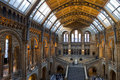 Natural history museum in london the beautiful interior of the Royalty Free Stock Photography
