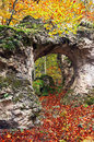 Natural hole on rock in autumn forest an Stock Images