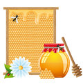 Natural honey vector illustration Stock Images