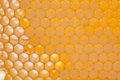 Natural honeycomb closeup. Unfinished yellow honey comb. texture. Soft focus. Royalty Free Stock Photo