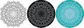 Natural mandala of circles for coloring book. Round pattern