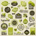 Natural organic product labels and emblems. Set of vectors