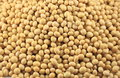 Soybean Background