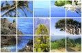 Natural Parc of La Palma Royalty Free Stock Photo