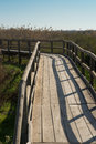 Natural park footbridge leading over marshland in a Royalty Free Stock Images