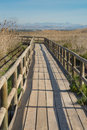 Natural park footbridge leading over marshy land in a Stock Photos