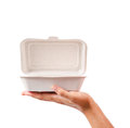 Natural plant fiber food box in hand. Royalty Free Stock Photo