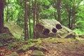 Natural rock formation trei caldari near piatra neamt Royalty Free Stock Photography