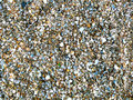 Natural sand and shells background Royalty Free Stock Photo