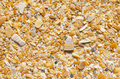 Natural sand stones and shells wallpaper colorful at beach as design texture background backdrop or Stock Image