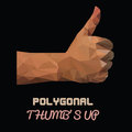 Natural skin polygonal thumbs up vector sign by hand like sign by hand vector illustration of a many triangles Royalty Free Stock Photo