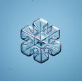 Natural snowflake little piece of ice crystal macro blue Stock Photo