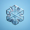 Natural snowflake macro naturals crystal little piece of ice Royalty Free Stock Photo