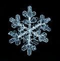 Natural snowflake macro naturals crystal piece of ice Stock Image