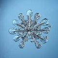 Natural snowflake macro naturals crystal piece of ice Royalty Free Stock Photos
