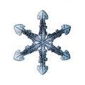 Natural snowflake macro naturals Royalty Free Stock Photo