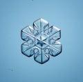 Natural snowflake macro naturals snow Royalty Free Stock Photography