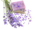 Natural soaps for bodycare bunch of fresh lavender flowers ang on white background Stock Photo