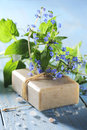 Natural soaps with flower on a light blue wooden table Stock Image