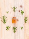 Natural Spa Ingredients rosemary essential oil for aromatherapy Royalty Free Stock Photo