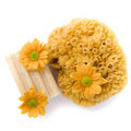 Natural sponge, soap and flowers Stock Photography