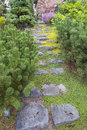 Natural stone steps to frontyard garden with green moss and creeping thyme ground cover going up Stock Image