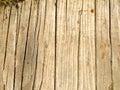 Natural texture of ancient wood