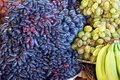 Natural vegetative texture of ripe berries of grapes and bananas of blue and yellow color Royalty Free Stock Photo