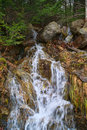Natural water runoff gentle flow of a from a forest onto rocks Stock Photography