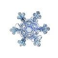 Natural white crystal snowflake macro natura ice l Royalty Free Stock Photo