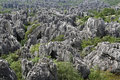 Natural wonders of China (stone forest) Stock Photo