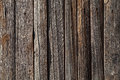 Natural wood warm grey texture Royalty Free Stock Photography