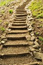 Natural wooden stairs Royalty Free Stock Photo