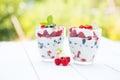 Natural yogurt with fresh berries and muesli healthy dessert over nature garden background Royalty Free Stock Photo