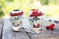 Natural yogurt with fresh berries and muesli healthy dessert over nature garden background Stock Photo
