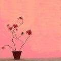 Nature art background Royalty Free Stock Photo