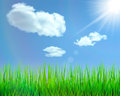Nature background with green grass blue sky clouds sun and glare vector illustration Royalty Free Stock Images