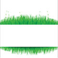 Nature background with green grass eps Stock Image