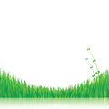 Nature background with green grass eps Royalty Free Stock Photo